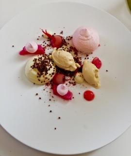 Rhubarbe, yaourt, vinaigre