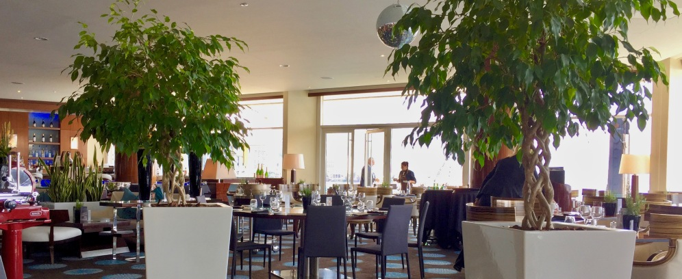 Saphir Lounge