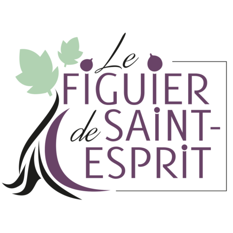 Le Figuier de Saint-Espri