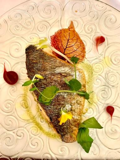 La Pêche du jour : la daurade risotto citron confit©lepetitlugourmand