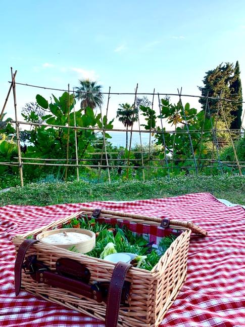Pique-Nique d'amuse-bouches Mirazur dans les Jardins ©lepetitlugourmand