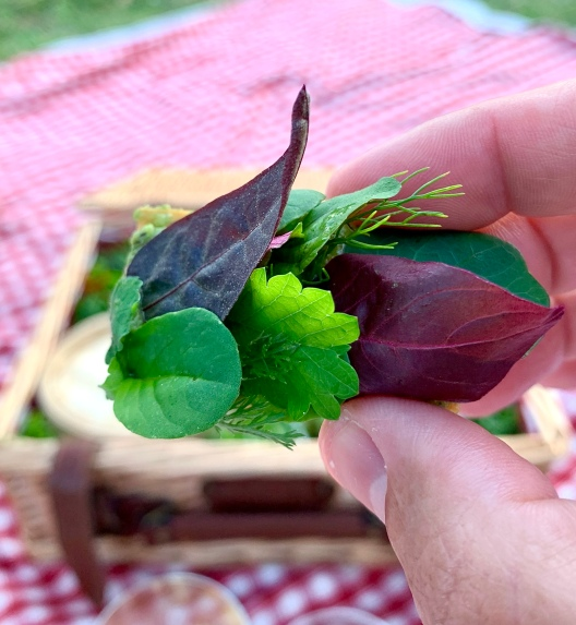 Fines feuilles aromatiques - pesto d'herbes ©lepetitlugourmand